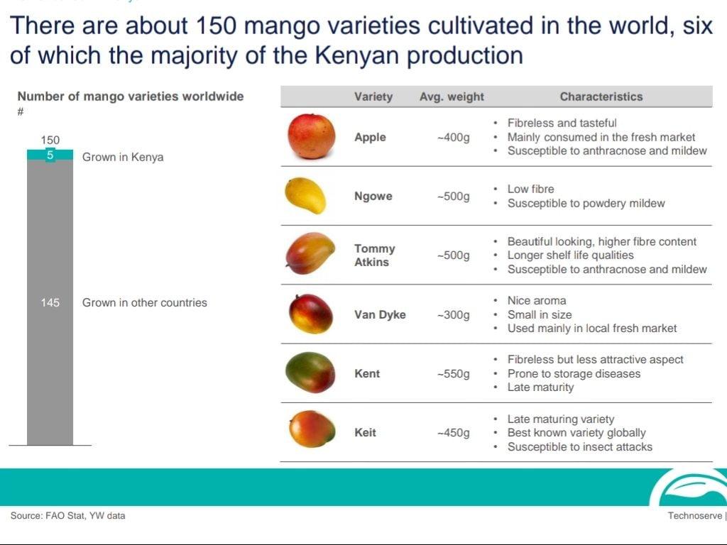 Mango- Second fruit production wise in Kenya 1