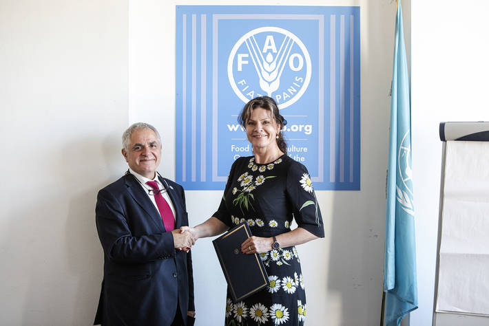 FAO and the Netherland's FMO partner to improve agriculture financing in developing countries 1