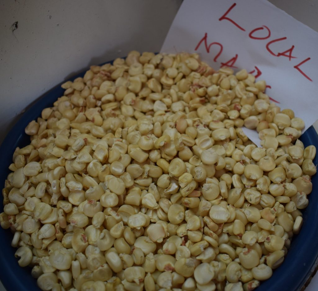 Local maize