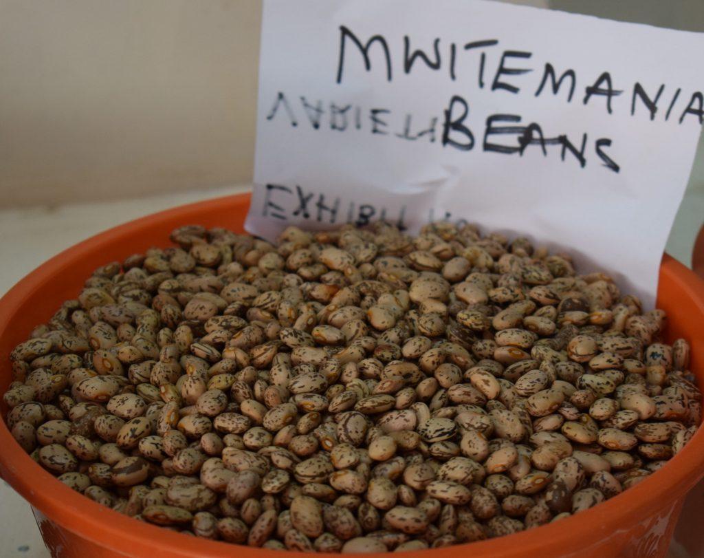 Mwitemania beans