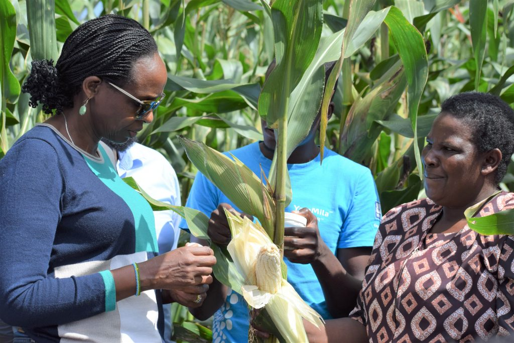 AGRA President Agnes Kalibata with a maize farmer in GithunguriKiambu County min