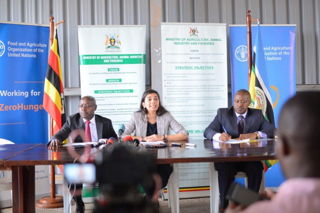 Locust invasion report in Uganda 1