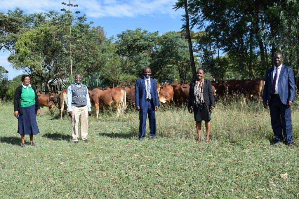 Nakuru county launches breed improvement program 1