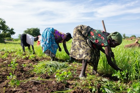 U. S. funded feeder roads in South Sudan to help local farmers 1