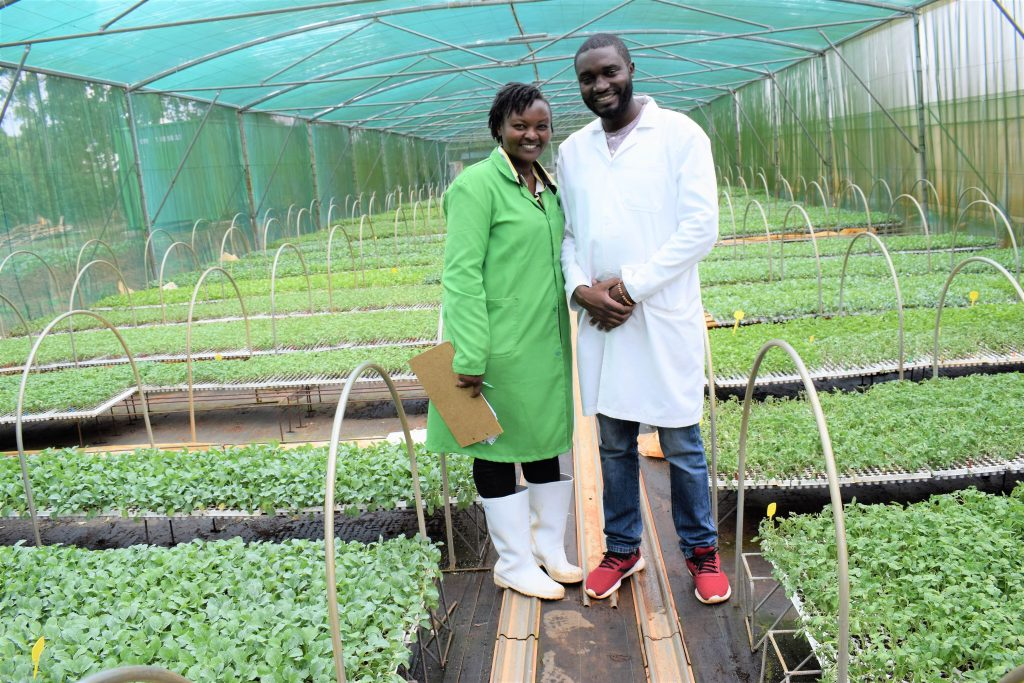 The couple who lost savings in agriculture and bounced back to seedling propagation 1