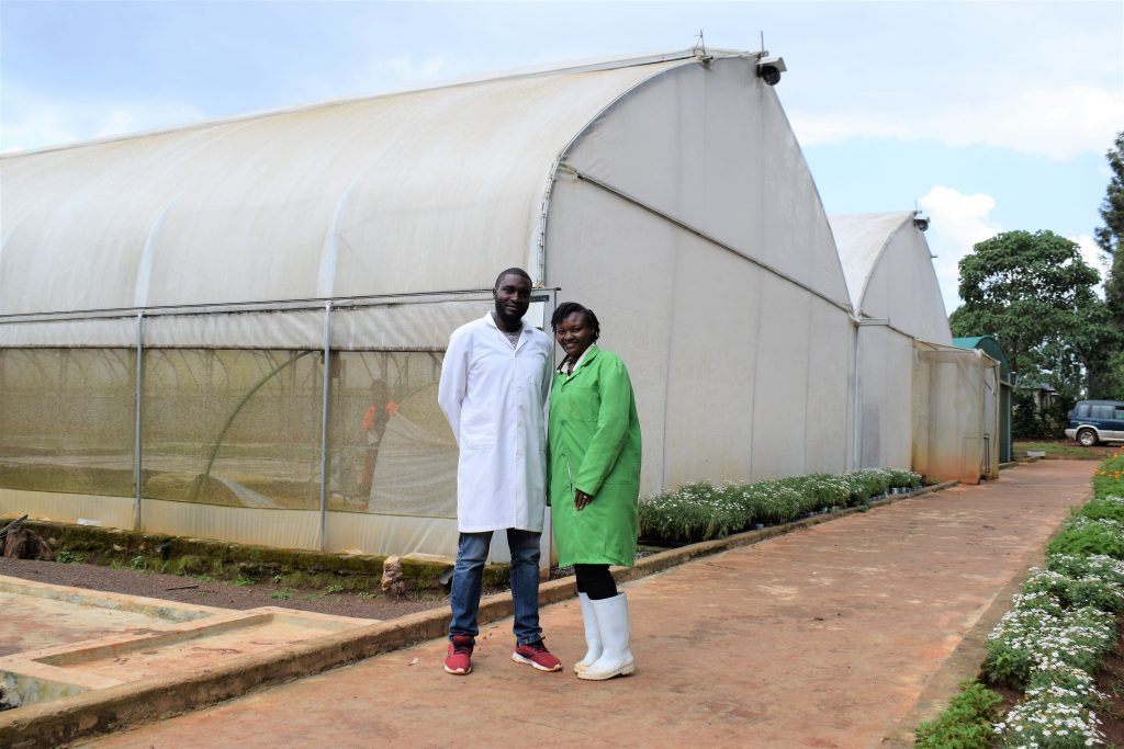 The couple who lost savings in agriculture and bounced back to seedling propagation 3