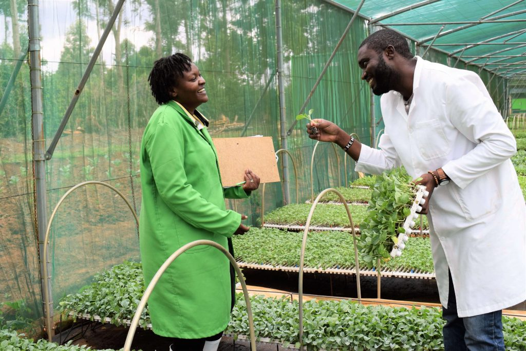 The couple who lost savings in agriculture and bounced back to seedling propagation 5