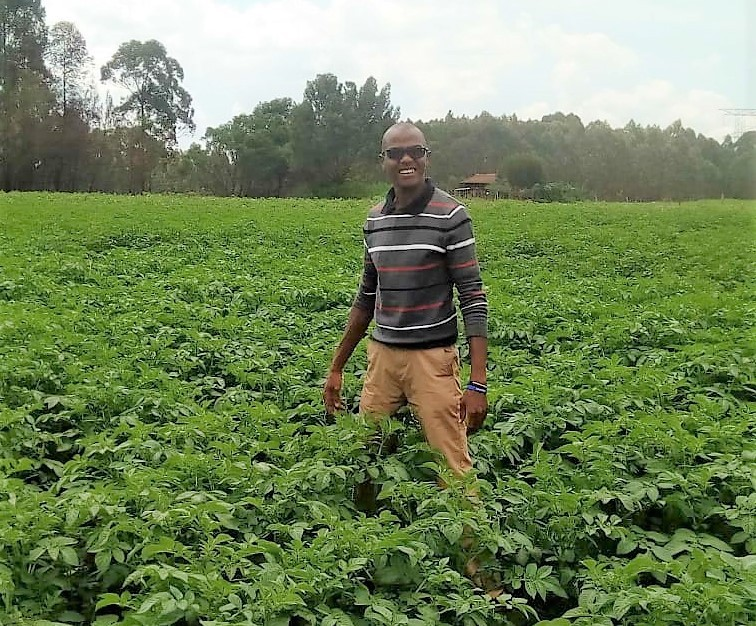 Youth ventures into seed potato production 1