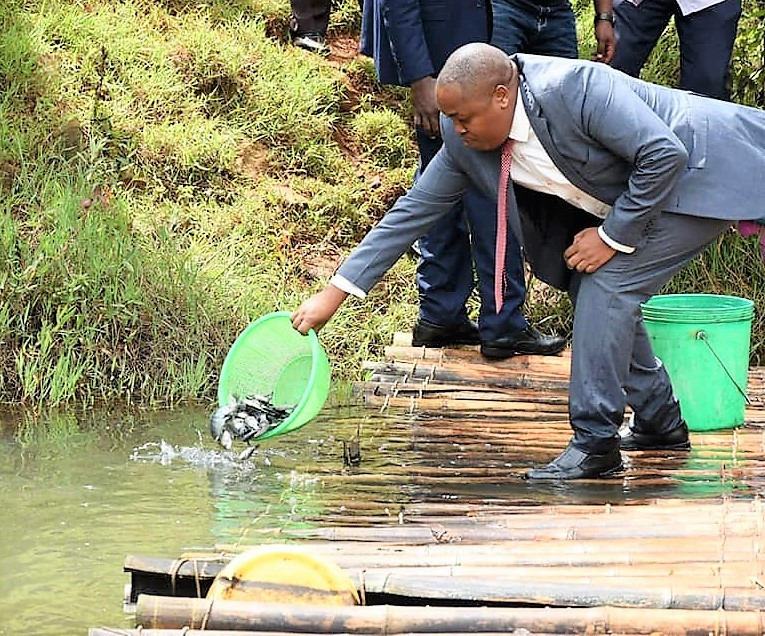 Nyeri to privatize fish processing plant as it counts on fisheries to employ the youth 2
