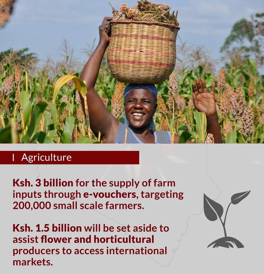 President Uhuru's economic stimulus package to the agriculture sector 1