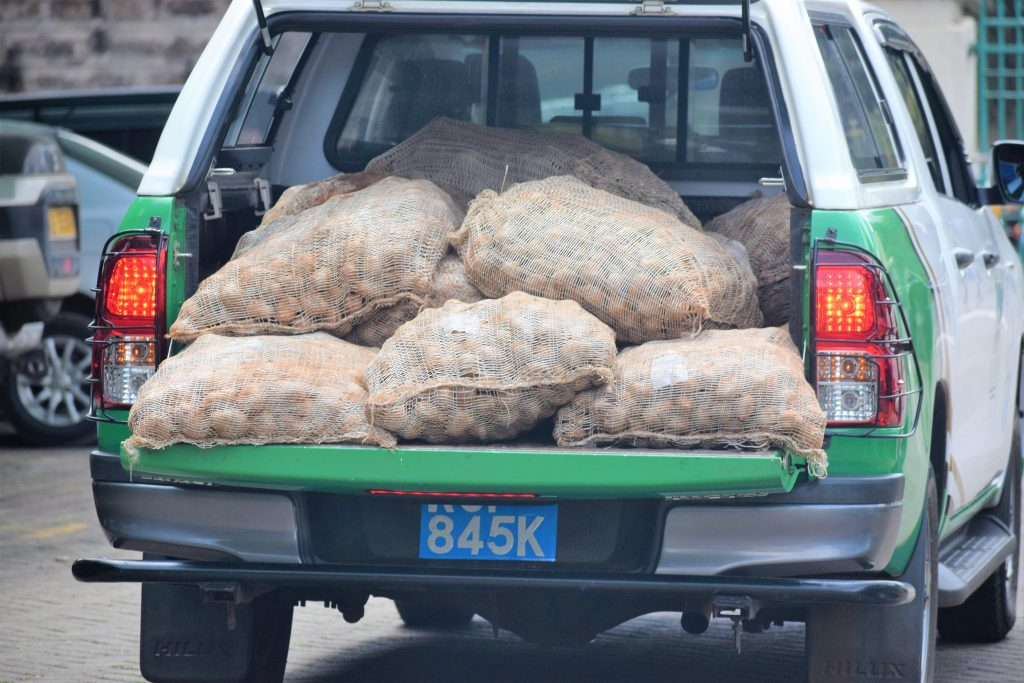 Counties receive potato basic seed to produce certified seeds 2