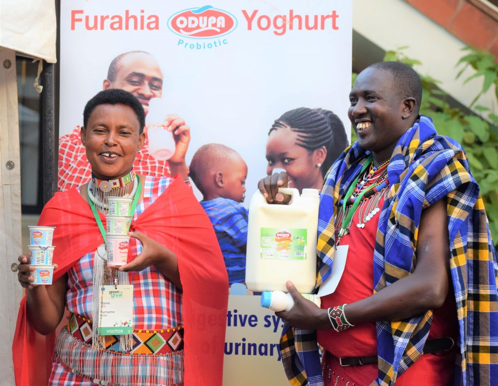 Maasai women led cooperative in probiotic yoghurt production 2