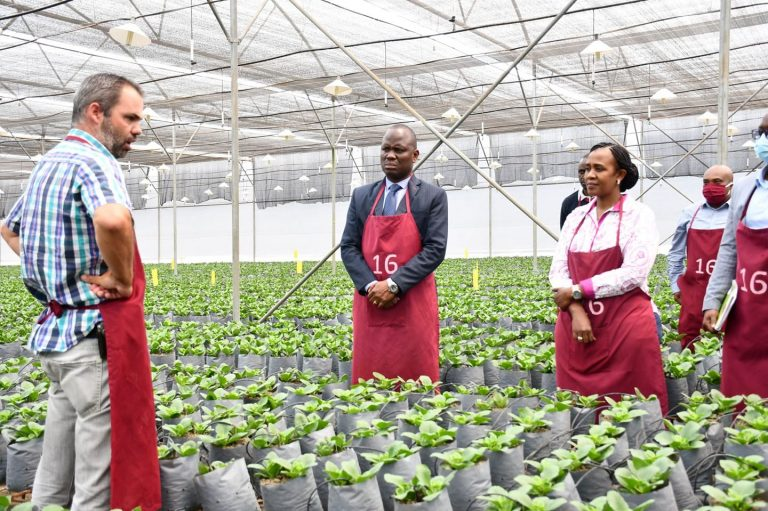 Agriculture News in East Africa 40