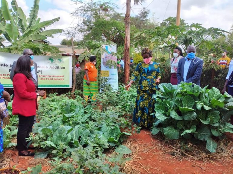 Agriculture News in East Africa 17