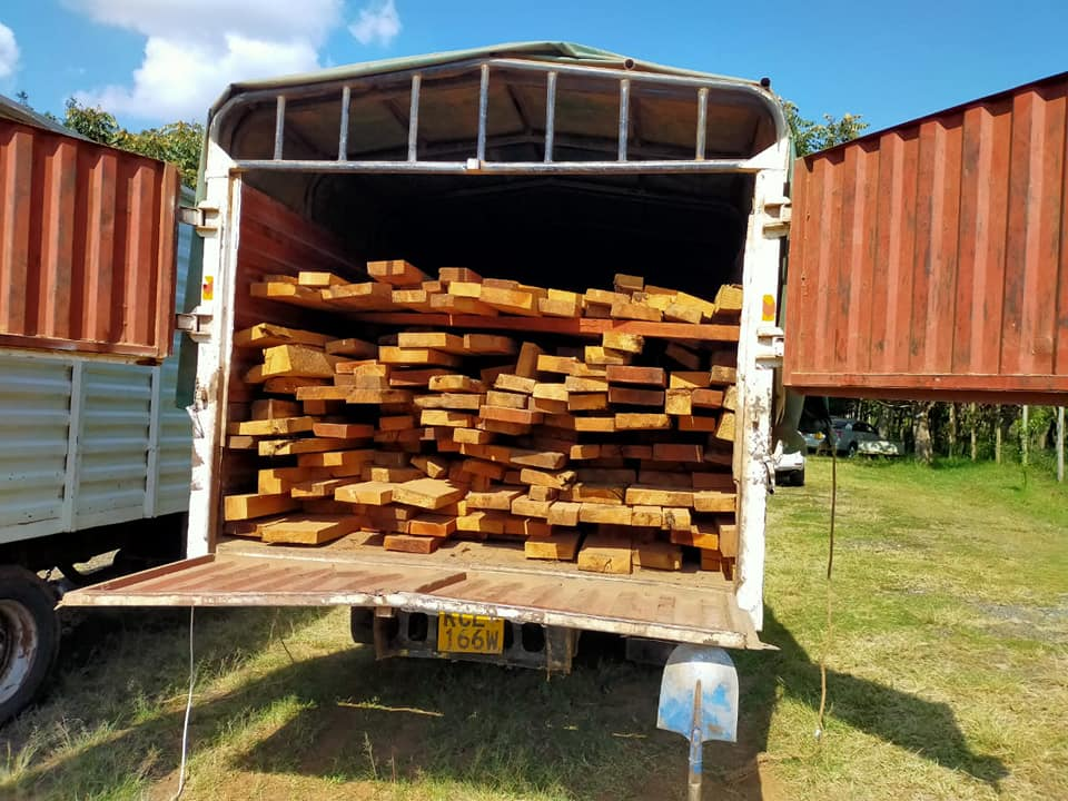 Illegal loggers nabbed devising innovative ways to evade arrest. 1