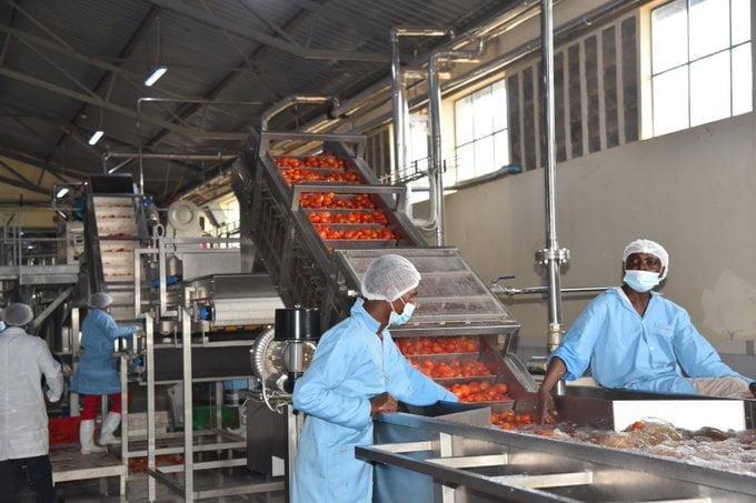 Makueni Factory 1