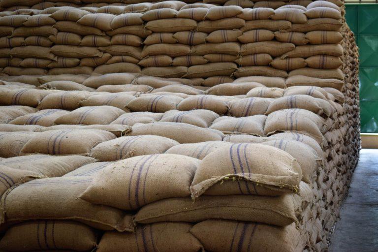 Maize in a warehouse min
