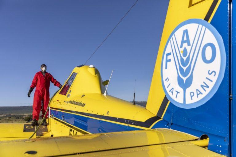 FAO Locust plane
