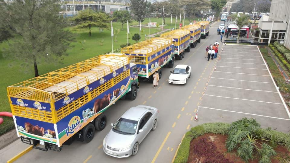 Kitui Livestock carriers 3